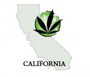 california-medical-marijuana[1]